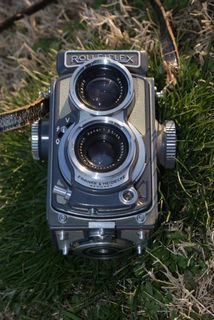 Rolleibaby3