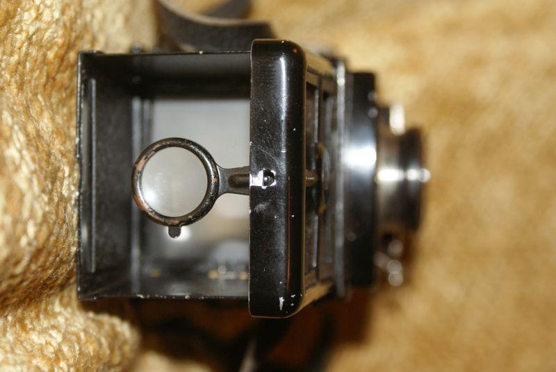 DSC02519