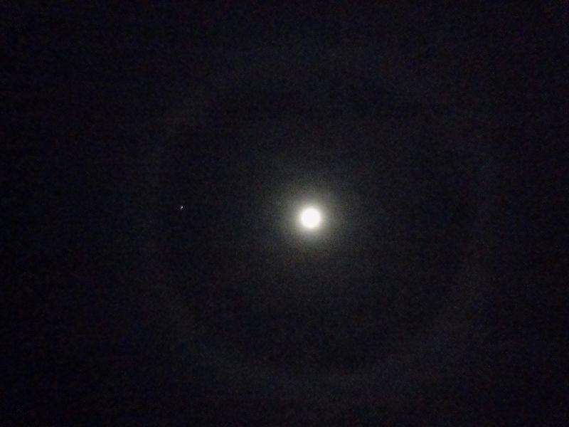 Moonring (2)