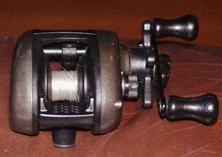 DSC02610 (800x566)